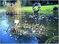 January Frost Botanic Garden Freiburg Freeze - Master Botany Photography 2014 - panoramio.jpg