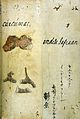 Japanese Herbal, 17th century Wellcome L0030064.jpg