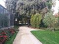 Jardin des Plantes de Poitiers 06.jpg