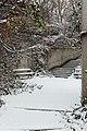 Jardin naturel (Paris) sous la neige 08.jpg