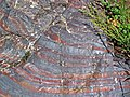 Jaspilite banded iron formation (Soudan Iron-Formation, Neoarchean, ~2.69 Ga; Stuntz Bay Road outcrop, Soudan Underground State Park, Soudan, Minnesota, USA) 55 (18602978984).jpg