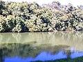 Jd. Botânico6 - panoramio.jpg
