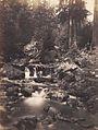 Jindrich Eckert - Potok u Cerneho jezera (1880-2).jpg