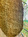 Jonnagiri Erragudi Yerragudi Asoka Inscription site, Andhra Pradesh India - 8.jpg