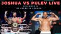 Joshua vs Pulev 02 Arena London.png