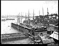 Jubilee Dock, Sydney Harbour (8137032114).jpg