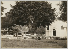 KITLV 12248 - Kassian Céphas - Residence Office (left) and the Protestant Church (right) at Yogyakarta - Around 1895.tif