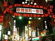 Kabukicho Gate at night.jpg