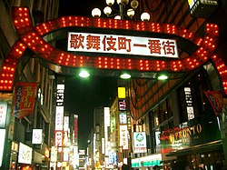 Kabukicho Gate at night.jpg
