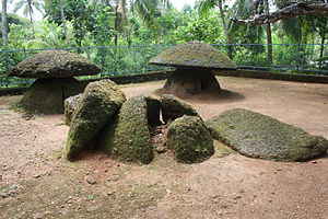 Ariyannur Umbrellas - A view of three umbrella stones