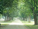 Kadma Sonari Link Road.jpg