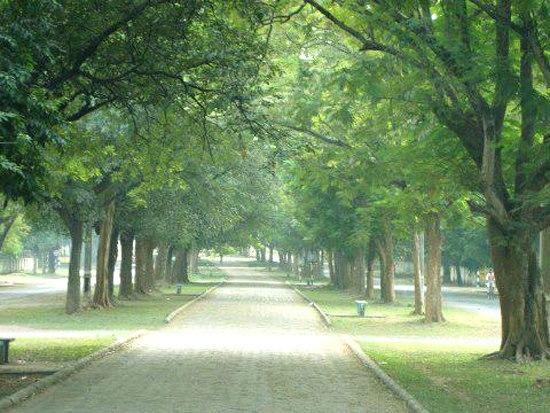 Kadma Sonari Link Road