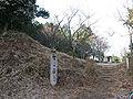 Kameyamajyo.jpg