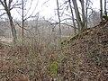 Kastrānes pilskalns, - aizsargrāvis, Suntažu pagasts, Ogres novads, Latvia - panoramio.jpg