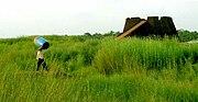 Kerala Bakel fort