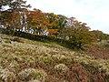 Kimigahatacho, Higashiomi, Shiga Prefecture 527-0202, Japan - panoramio (30).jpg