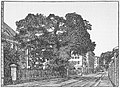Kjøbenhavn - Kastanietræet foran Reformert Kirke.jpg