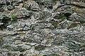 Kloster Altzella 2H1A0508WI.jpg