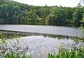 Koepenick - Teufelssee (Devil's Lake) - geo.hlipp.de - 36663.jpg