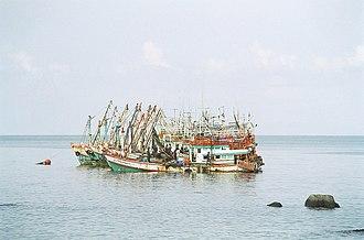 Artisanal fishing - Image: Koh Tao Mae Haad boats