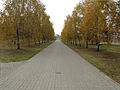 Komunalny Cmentarz Południowy w Warszawie 2011 (45).JPG