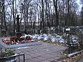 Krasnenkoe cemetery 5.jpg