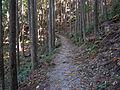 Kumano Kodo Kogumotorigoe World heritage44.JPG