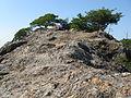 Kuraiwa (Mount Makio)2.jpg