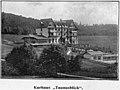 Kurhaus 'Taunusblick', XVIII 1689 Bild 14, Bildband um 1900.JPG