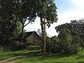 Kvykliai, Lithuania - panoramio (3).jpg