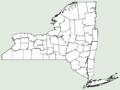 Lagenaria siceraria NY-dist-map.png
