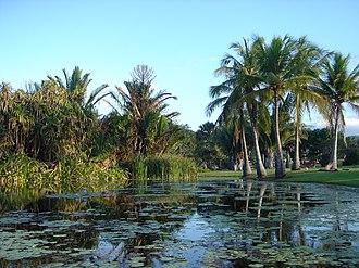 The Palmetum, Townsville - Image: Lagoon area Townsville Palmetum