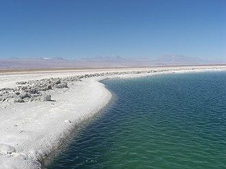 Salar de Atacama - Image: Laguna Cejas
