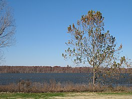 Lake Washington, Mississippi - 1.jpg