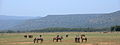 Lake manyara 2012 authorBevanda Wegmann2.JPG