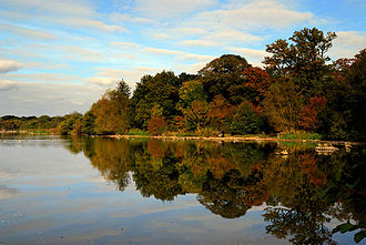 Hatfield Forest - The lake