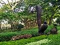 Lalbagh (Lal Baugh) Botanical Garden in Bangalore (now Bengaluru) 3.jpg