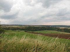 Landscape-IMG 6997.JPG