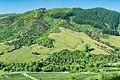 Landscape of Tasman Region.jpg