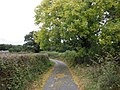 Lane, to Kerswell Cross - geograph.org.uk - 1514858.jpg