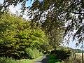 Lane Junction near Longnewton - geograph.org.uk - 647860.jpg