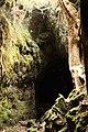 Lava cave on Rangitoto.jpg