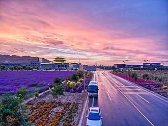 Zhangye - Lavender and afterglow in Zhangye