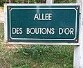 Le Touquet-Paris-Plage 2019 - Allée des Boutons-d'Or.jpg