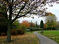 Linear Park inside Wolverhampton Ring Road - geograph.org.uk - 1562010.jpg