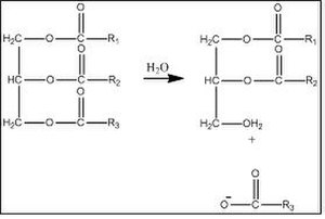 Chemical process of decomposition