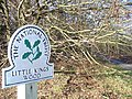 Little Kings Wood - geograph.org.uk - 668228.jpg