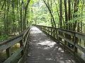 Little River Trail 02, Reed Bingham Park.JPG