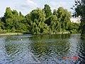 London Regent's Park - panoramio (6).jpg