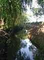 Longbridge Dike, Ulleskelf - geograph.org.uk - 573284.jpg